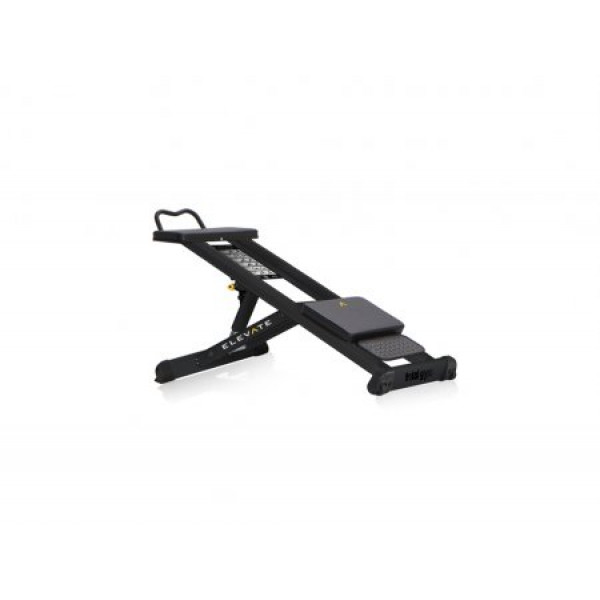 цена Тренажер для мышц пресса Total Gym ELEVATE Core ADJ