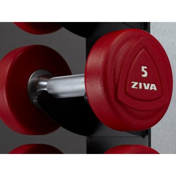 цена Гантели уретановые от 1 до 10 кг с стойкой Ziva